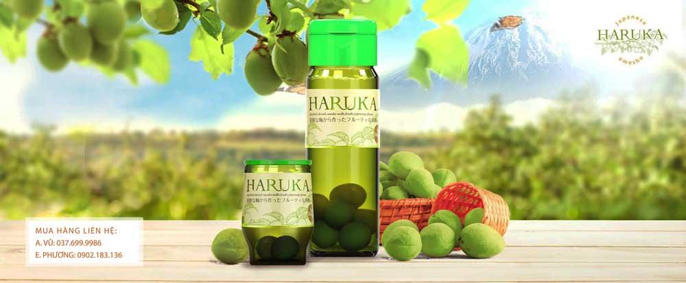 Các sản phẩm rượu Mơ Haruka